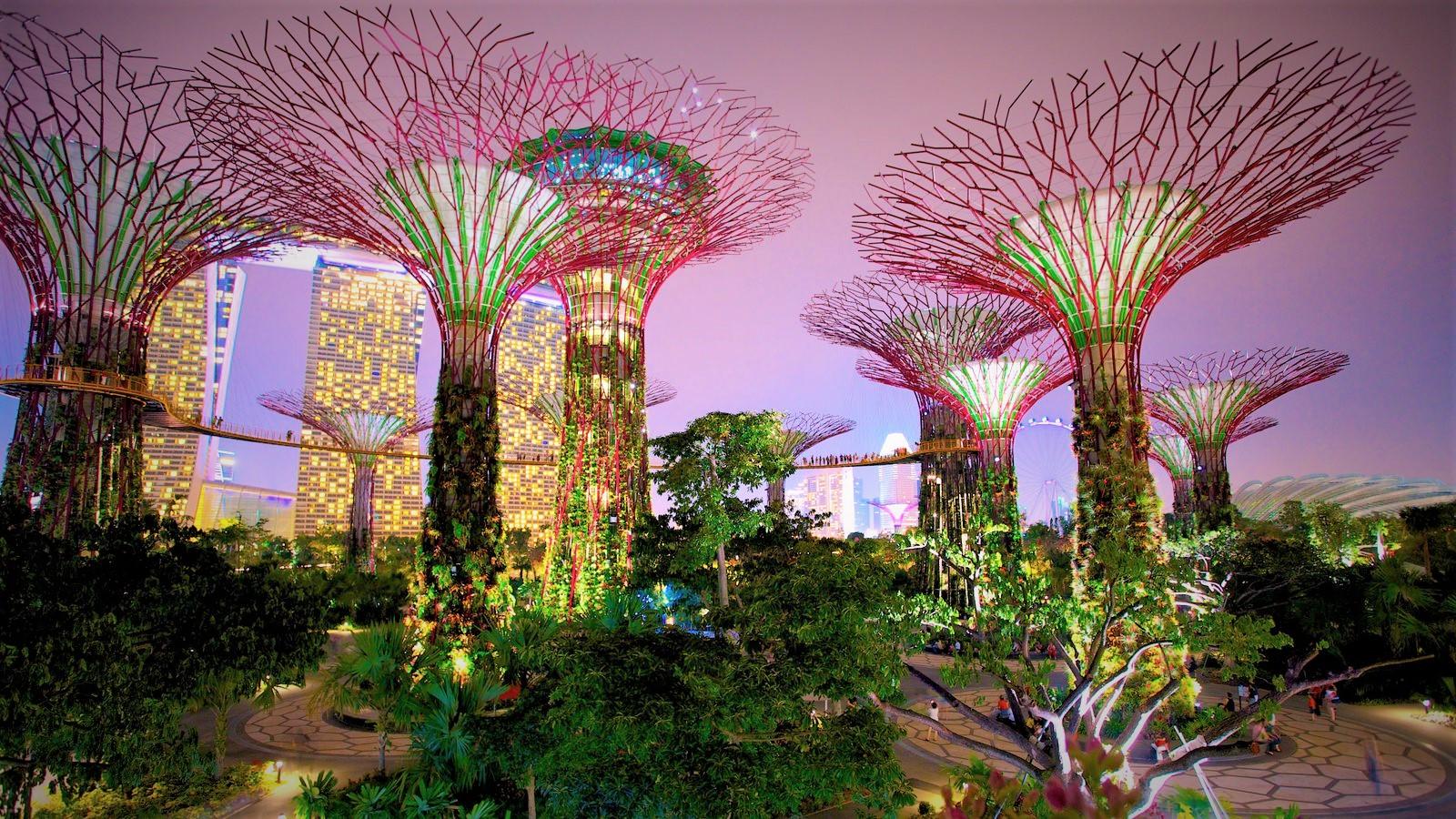 Beautiful world - Garden by the bay flower show ...