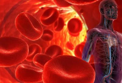Cara Mengatasi Lemak dan Gula Darah Tinggi Secara Alami