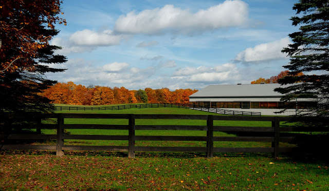 Just a nice view of a farm/ranch in the countryside - Oro-Medonte, near Orillia.