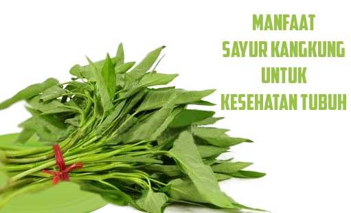 Manfaat Sayur Kangkung Untuk Kesehatan Tubuh