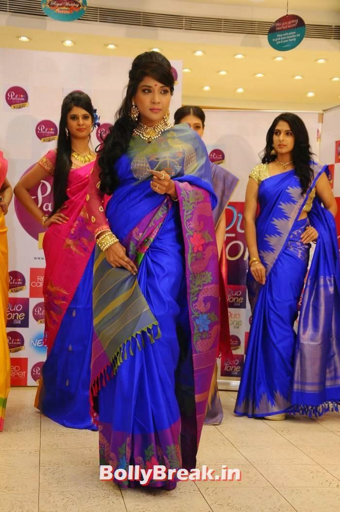 , Sakshi Agarwal pics in Blue Saree