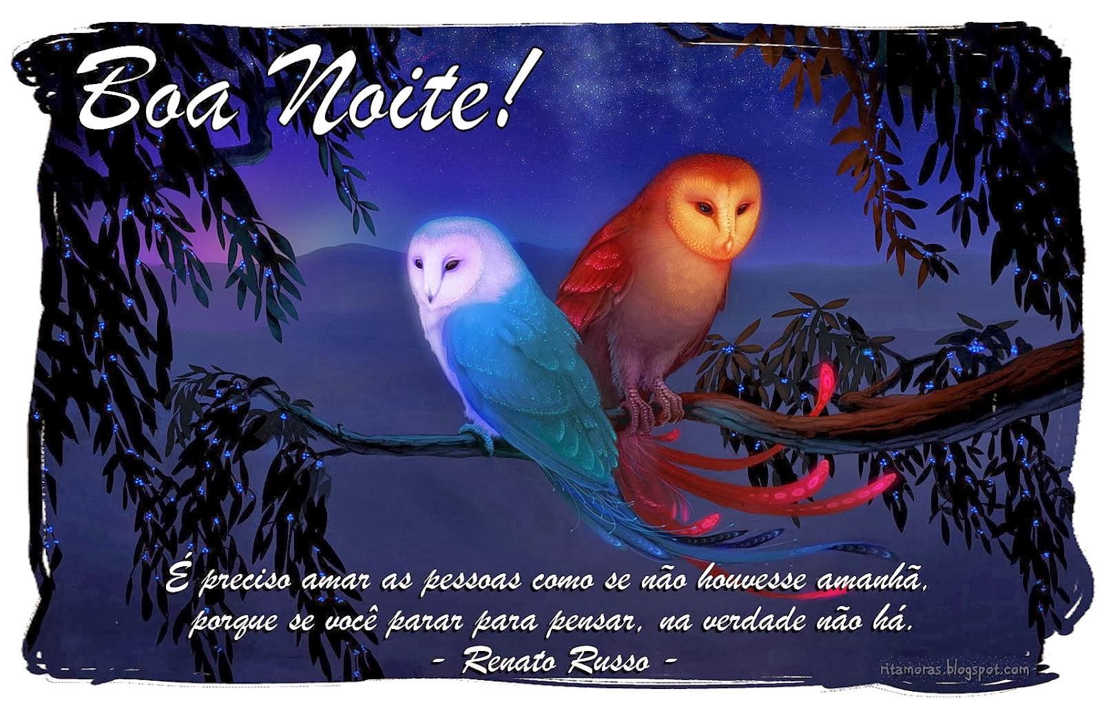 Msg De Boa Noite: Lindas Msg De Boa Noite .