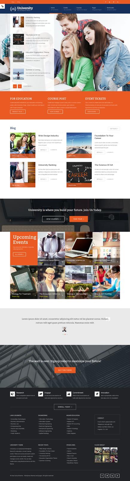 college website theme