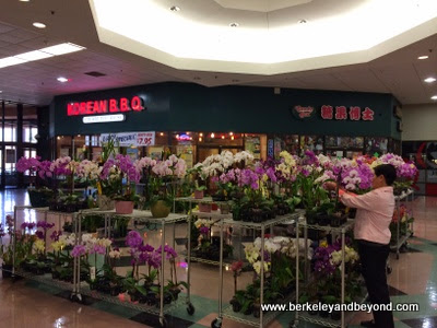 orchid stand at Pacific East Mall in Richmond, California