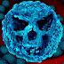 Las superbacterias podrían causar 10 millones de muertes.