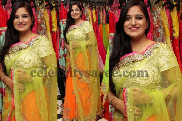Orange and Light Green Saree