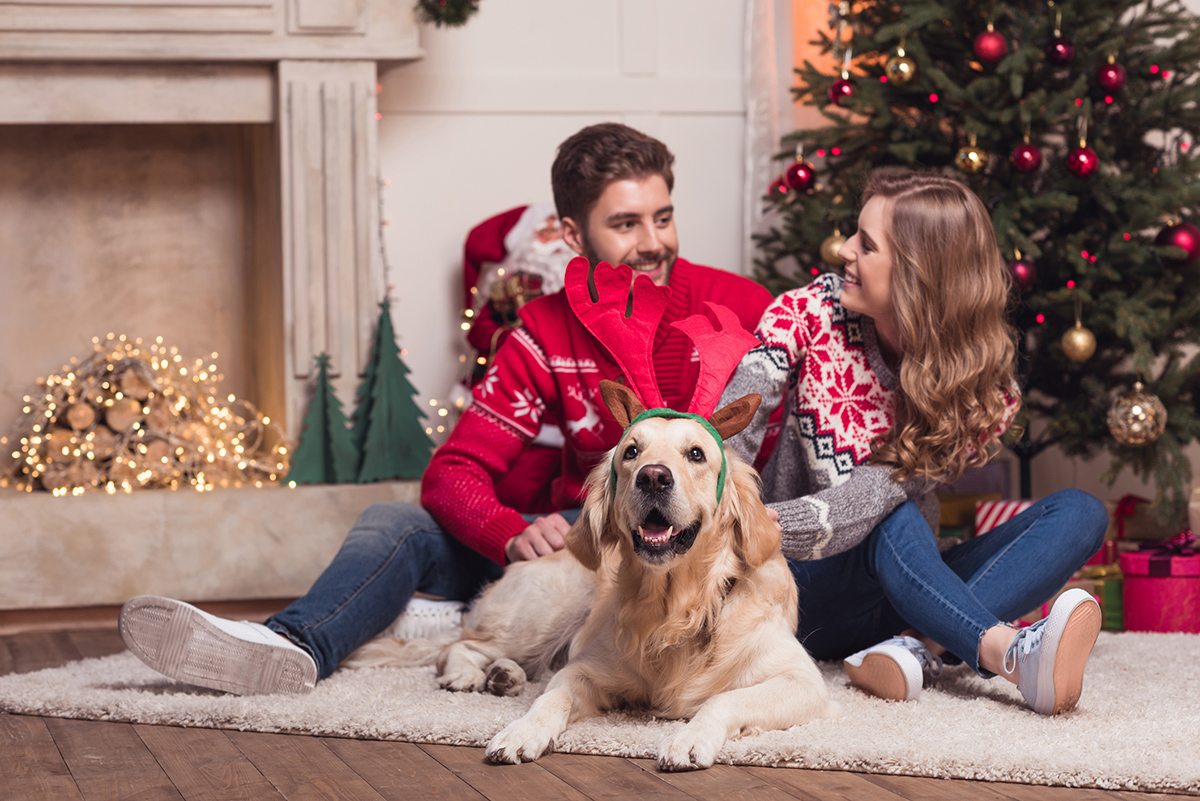Young-couple-celebrating-Christmas-with-their-Golden-Retriever-sitting-by-Christmas-tree