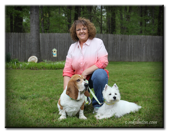 Woman with Basset Hound and Westie