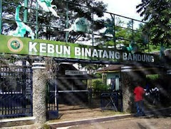 Yuk Kita Berwisata ke Kebun Binatang Bandung