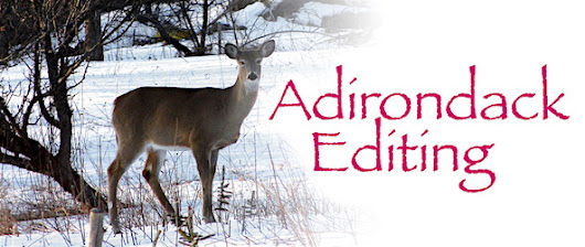 Adirondack Editing - Removing Filter Words
