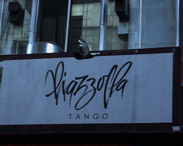 Paloma sobre cartel de Piazzolla tango.
