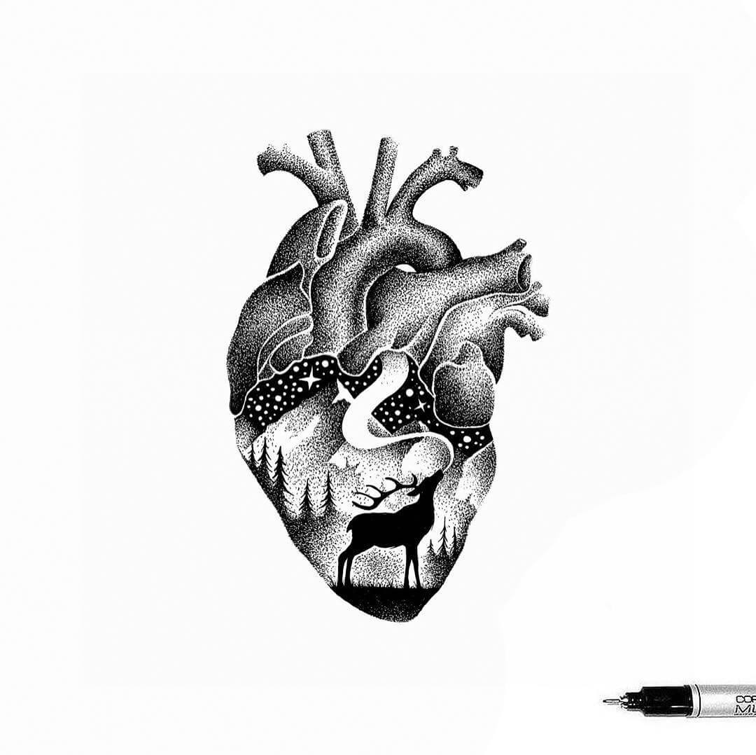 07-Wild-Heart-Thiago-Bianchini-Ink-Animal-Drawings-Within-a-Drawing-www-designstack-co