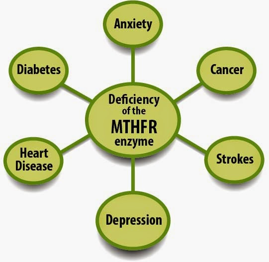 mthfr gene mutation pregnancy x--x us 2019