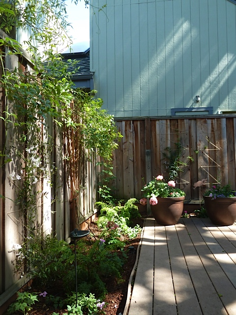 Menlo Park Townhouse By John Lum Architecture: Gardenscapes: A Shaded Townhouse Deck In Palo Alto. The