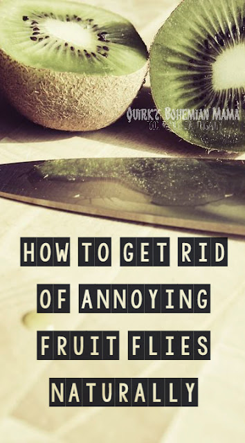 Natural, non-toxic solution for getting rid of fruit flies. How to Get Rid of Annoying Fruit Flies Naturally.