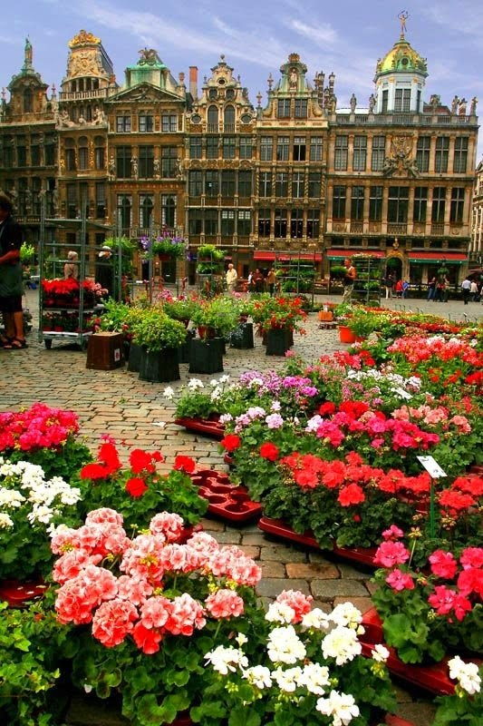 10 Best Places to Holiday in Belgium (100+ Photos) | La Grand-Place, Brussels, Belgium.