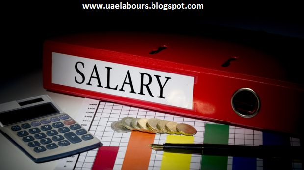 uae labor law, types of contracts in uae, salary issues in uae, end of service gratuity calculations, maternity leave in uae, probation period in uae