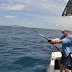 Game Fishing Opportunities in Cabo San Lucas