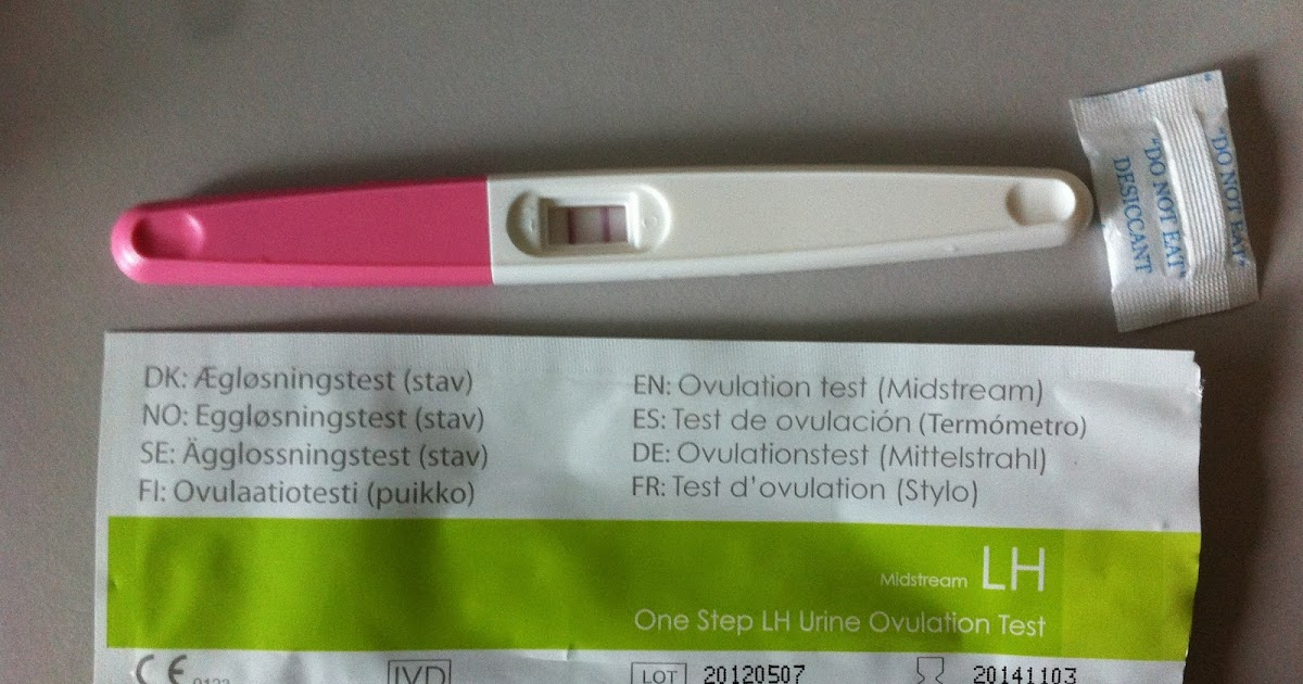 Bb bump shop ovulation pregnancy test kits for Bb shop