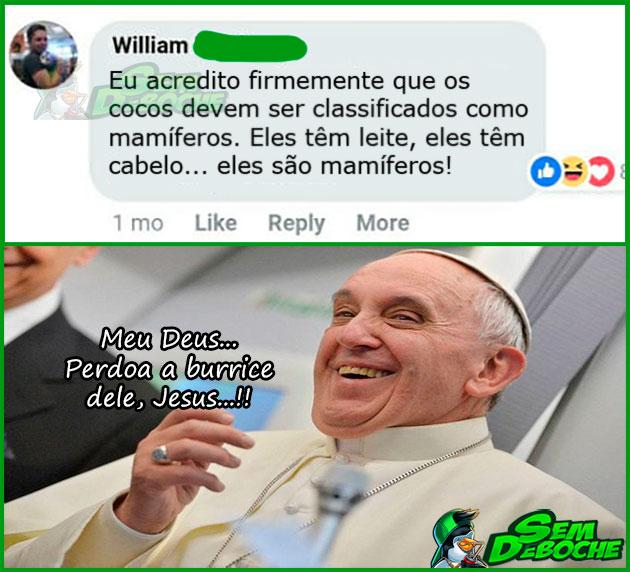 COCOS SÃO MAMÍFEROS
