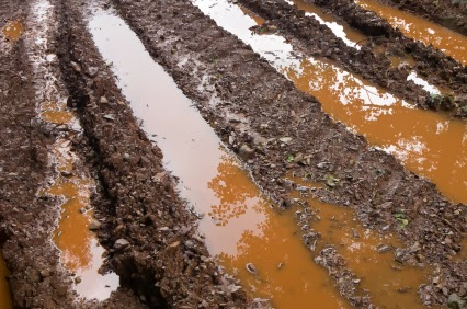 Bokashi Composting: Preventing Over-Watering And Amending