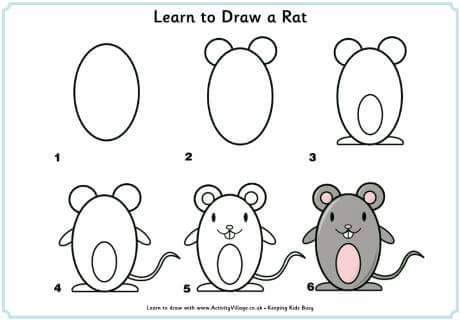 Learn to draw a rat  for kids
