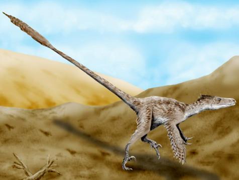 Posible apariencia de un Velociraptor mongoliensis, imagen de Wikipedia - Cine de Escritor