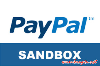 PayPal Sandbox Credit Card: Testing Transaction Process