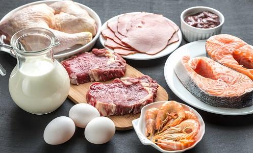 En Çok Protein İçeren 10 Besin