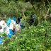 agrowisata kebun tanaman obat leuwiliang karyasari bogor