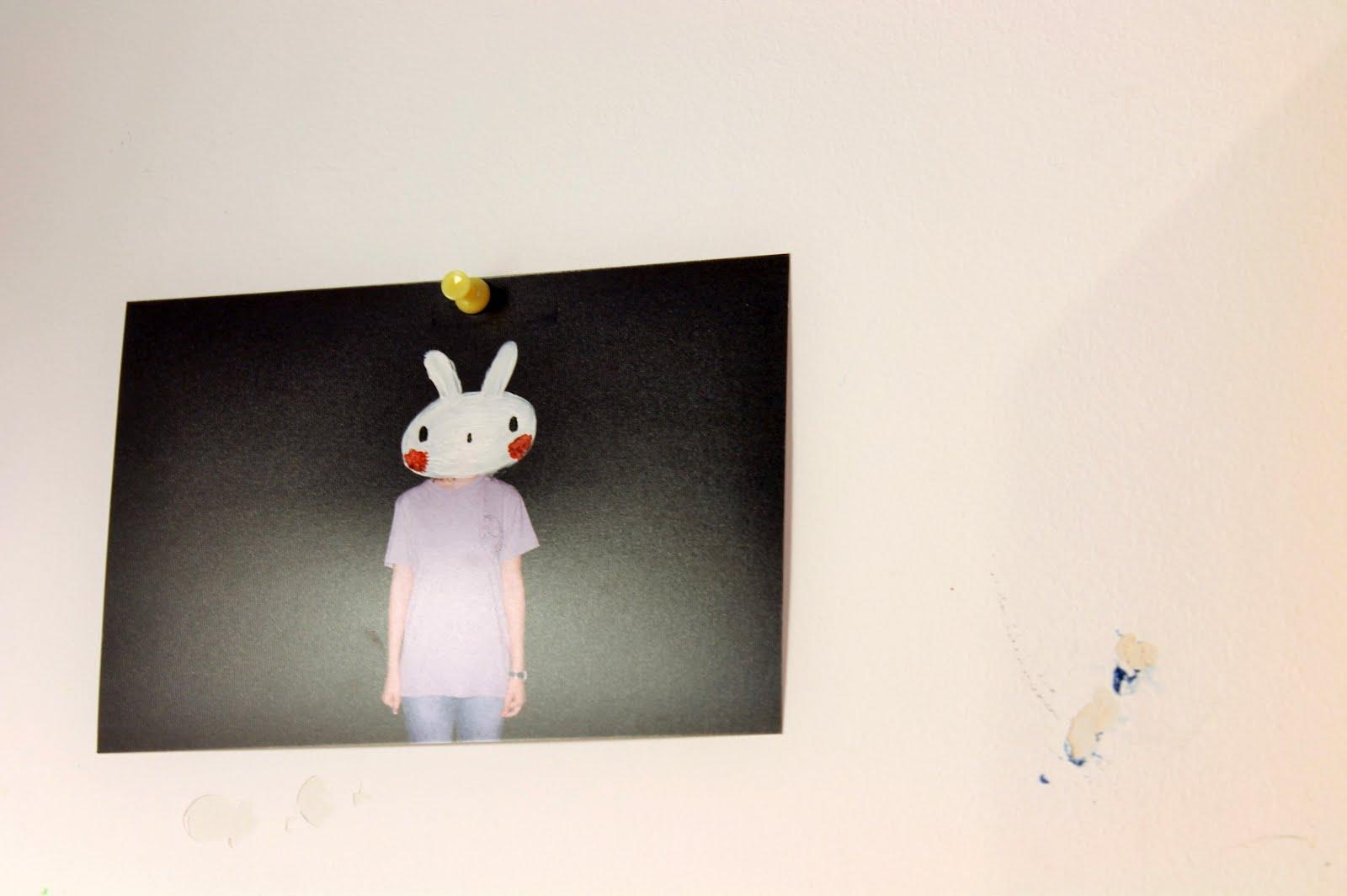 pintar conejo fotografia