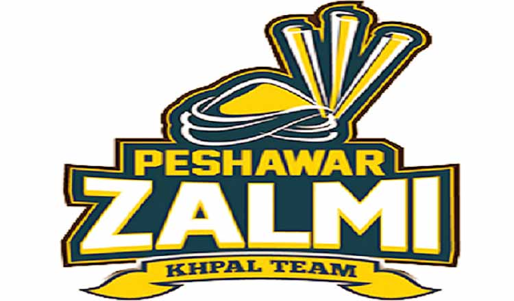 PSL 2021: Peshawar Zalmi, Pakistan Super League Team Peshawar Zalmi Team Squad PSL 2021, Pakistan Super League, PSL 2021 Team Captain and Players