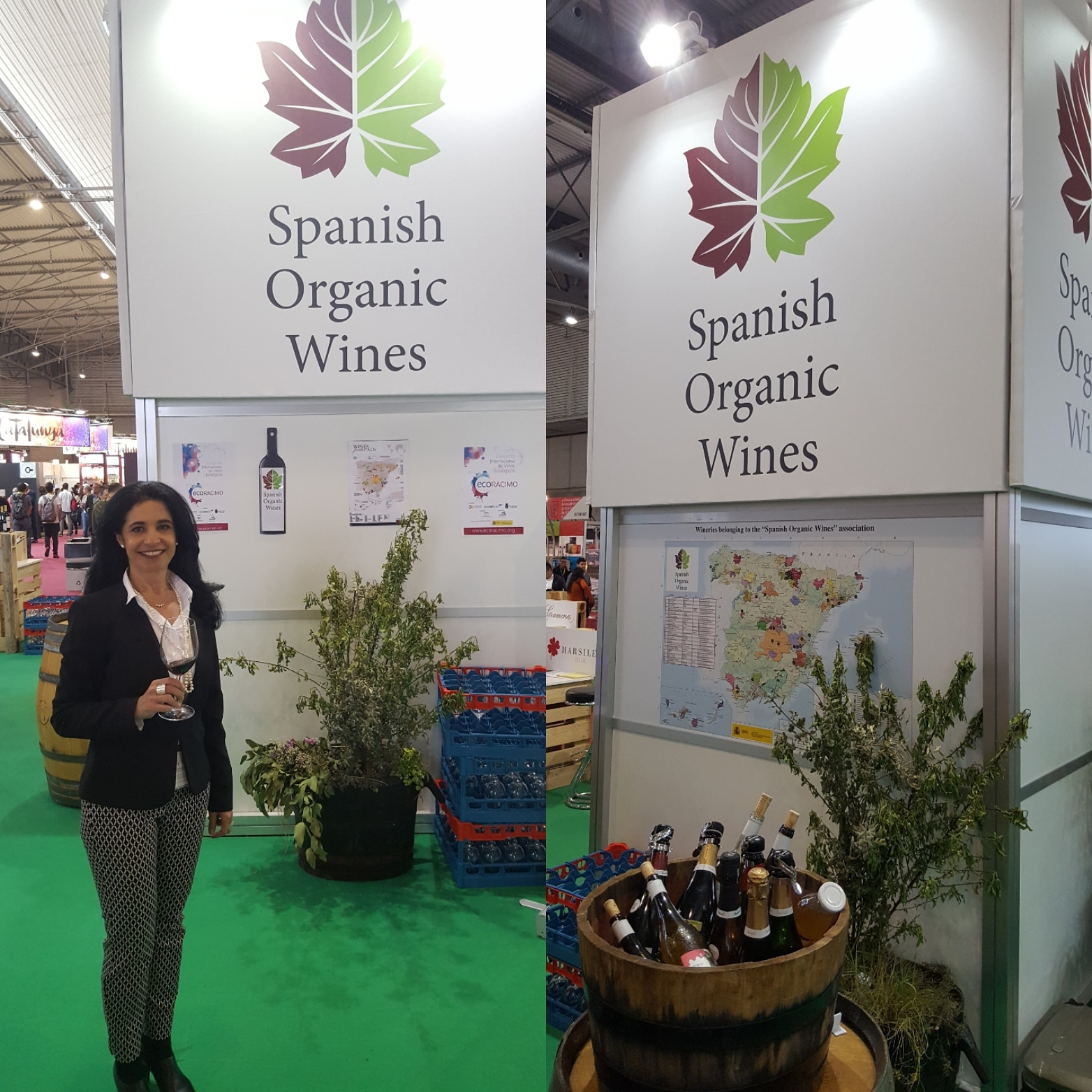 Spanish Organic Wines SOW