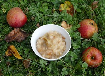 Apfel-Kompott mit Limette und Ingwer