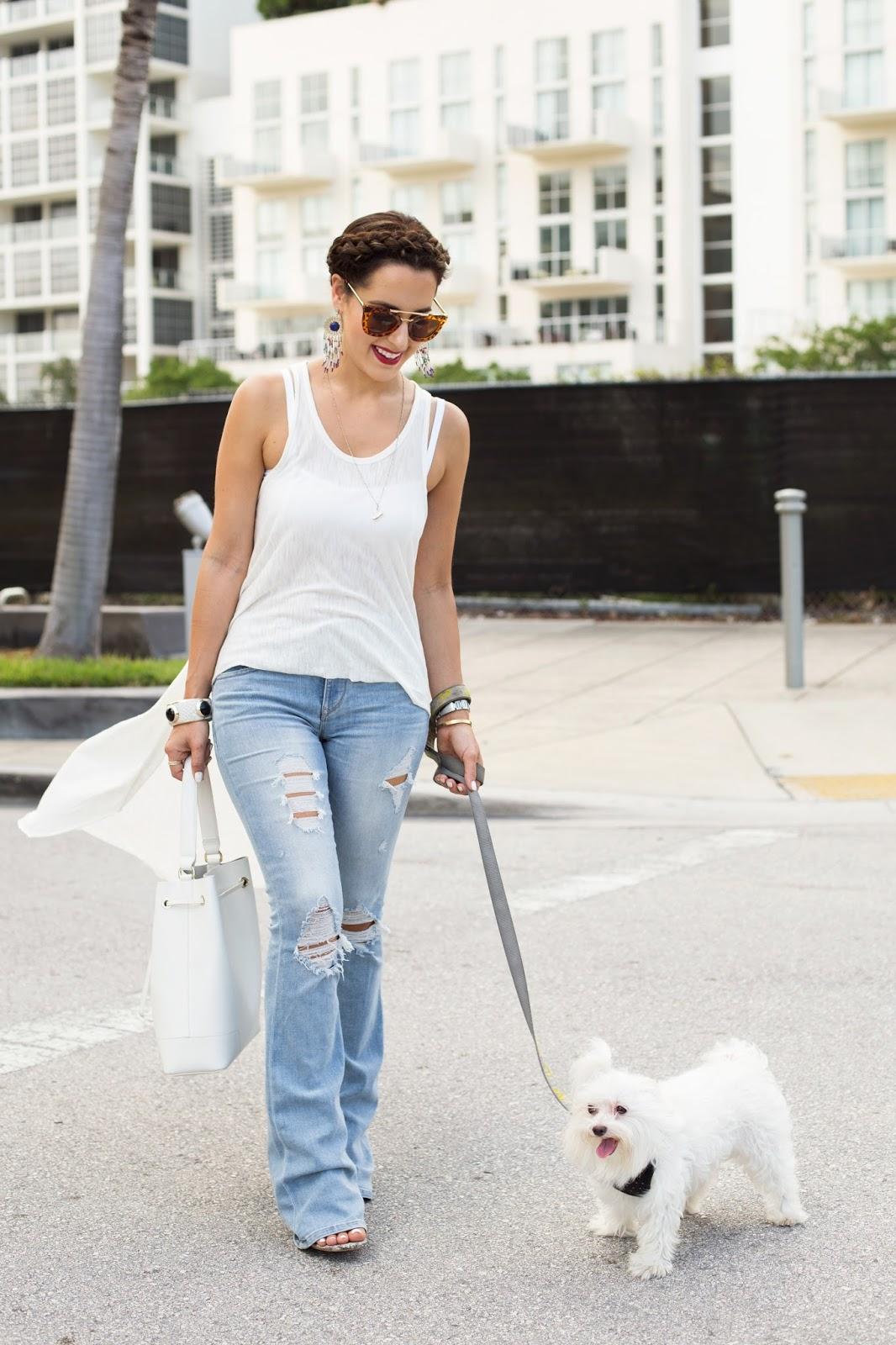 Fashion blogger kelly saks pet maltese dog
