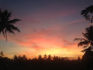 aide leit-lepmets indoneesia inspiratsioon päiksetõus