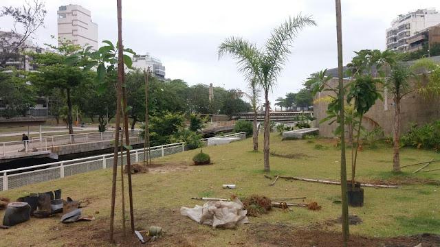 Mudas sendo plantadas Jardim Alah pela FPJ