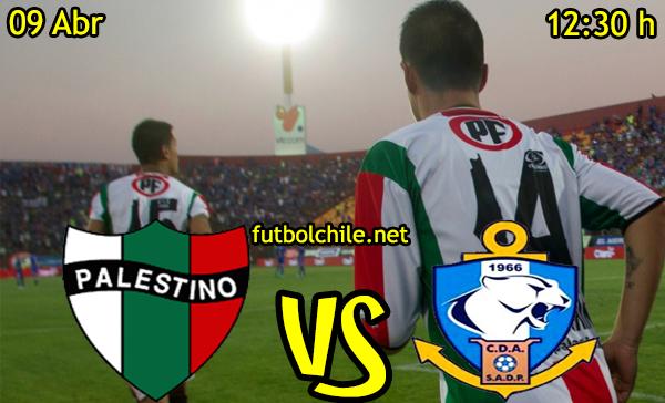 VER STREAM RESULTADO EN VIVO, ONLINE: Palestino vs Deportes Antofagasta