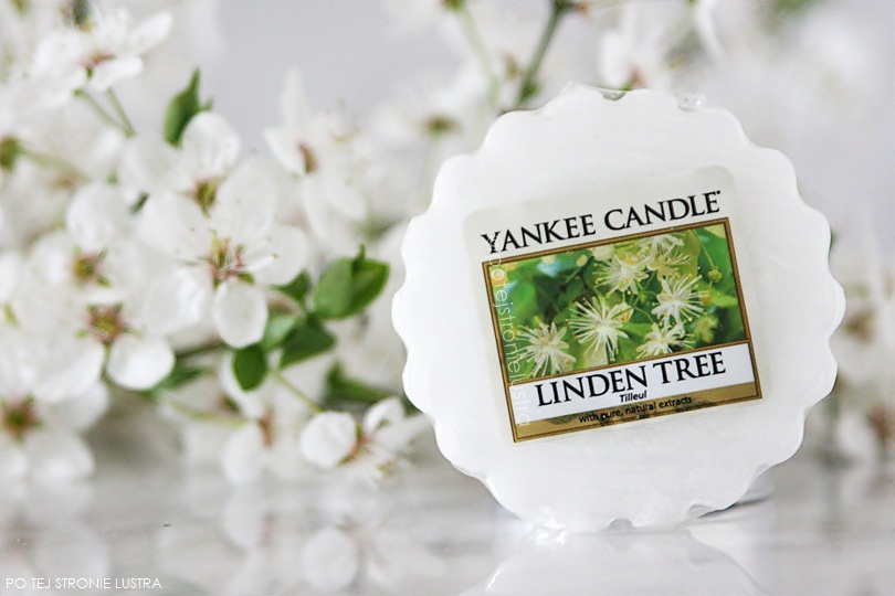 wosk yankee candle linden tree