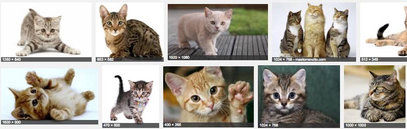 buscador imagenes google