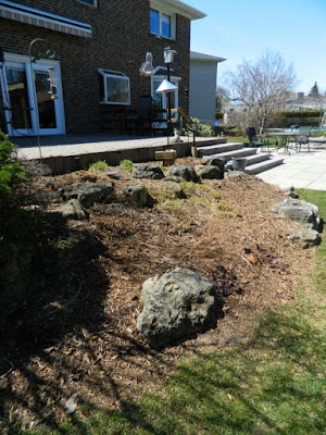 Toronto Etobicoke  spring garden cleanup after by Paul Jung Gardening Services Inc