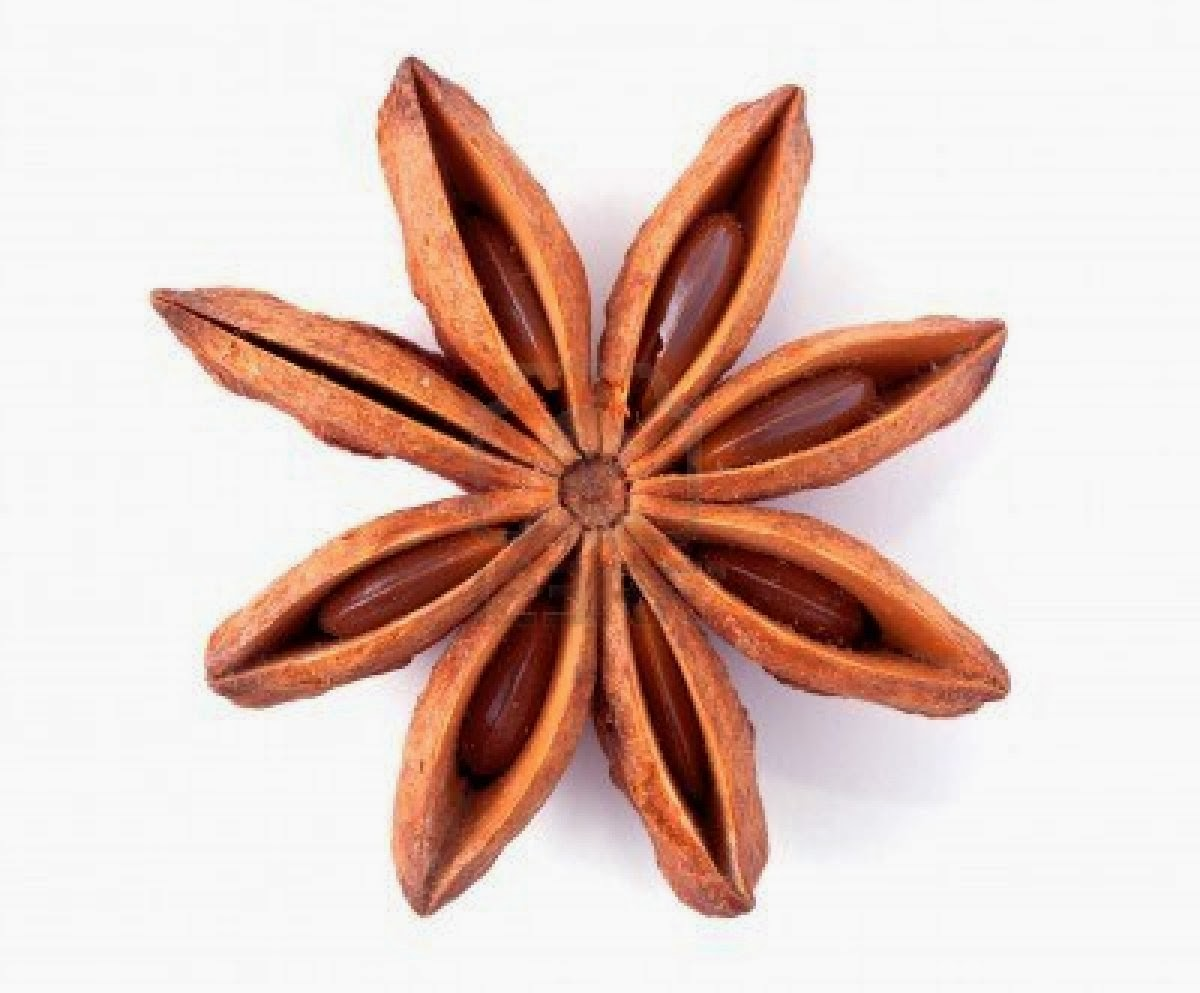 Bird House Diaries: Baking Class - Introduction to Star Anise