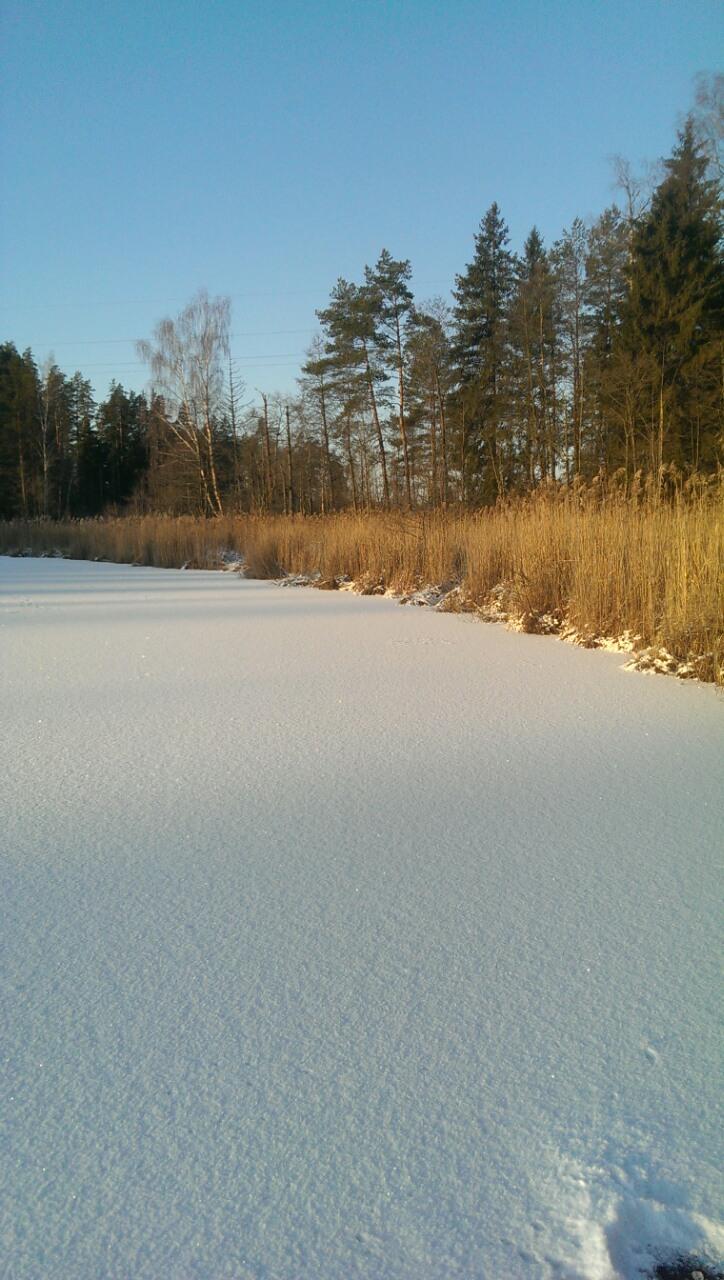 3 озеро Змеиное зимой