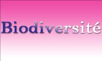 Cours Biodiversité - Aires protégées SVI6