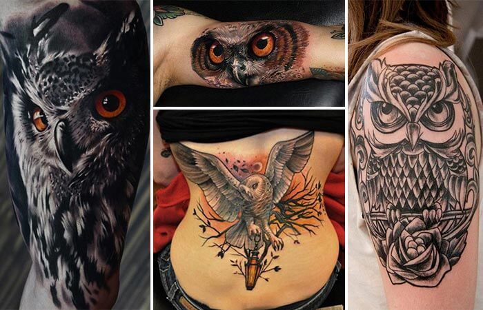 owl tattoo models