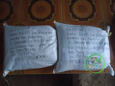 Benih Padi TRISAKTI 75 HST Panen  Pesanan ULFATUSY S Semarang, Jateng sudah meluncur