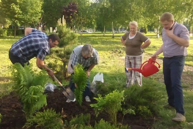 Более ста цветочных кустов высажено на бульваре Кузнецова Сергиев Посад