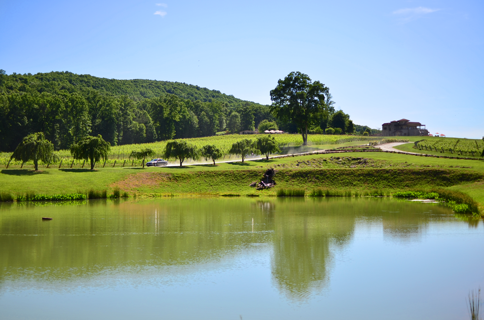 Raffaldini Winery in North Carolina