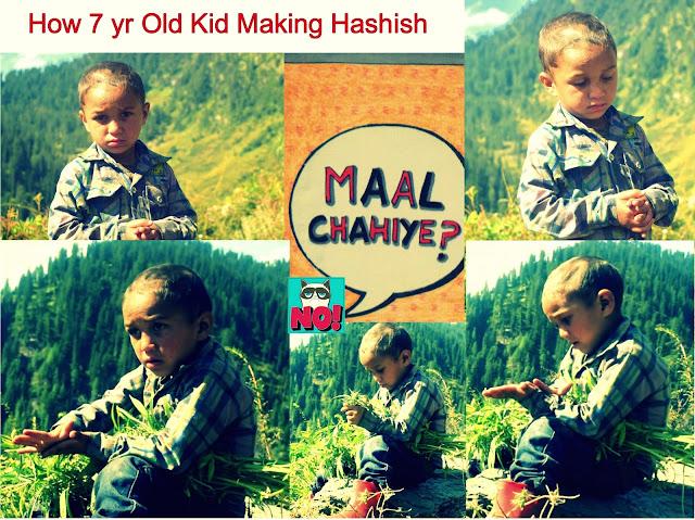 malana hash