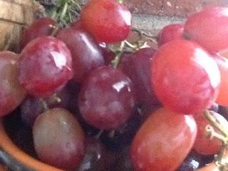 extraits de pépins de raisin et vitamine C : Proflavanol